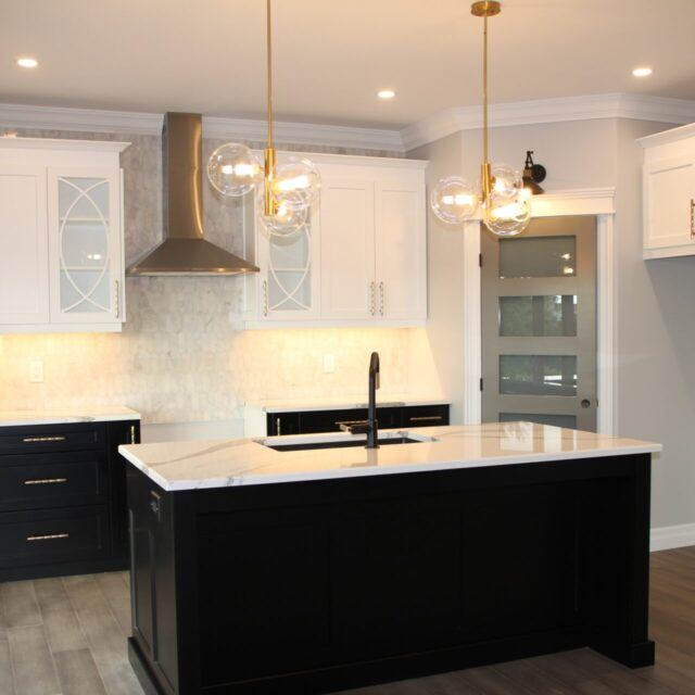 Project 4 - Contemporary Black and White Beauty